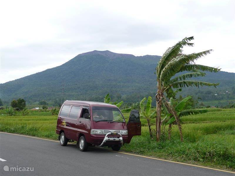 How to get to holiday Cici in Patai, Padang Magek?
