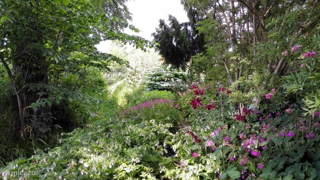 A garden to discover ......