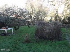 De lommerrijke tuin