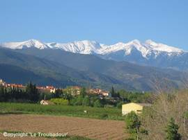The Canigou is the highest mountain in the vicinity