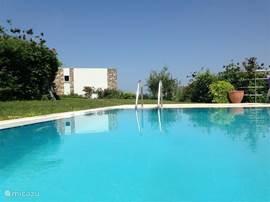 Het zwembad, met op de achtergrond het huis.