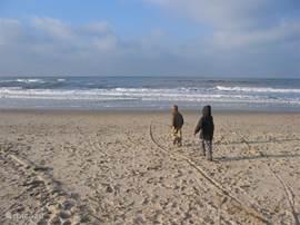 Het strand is op loopafstand (15 minuten). De route loopt door het bos en de duinen.
