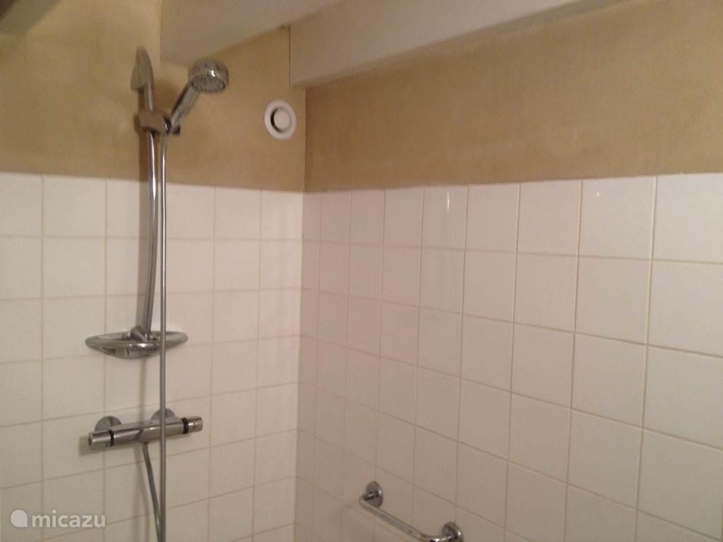 In de douche ruimte is ook een wastafel.