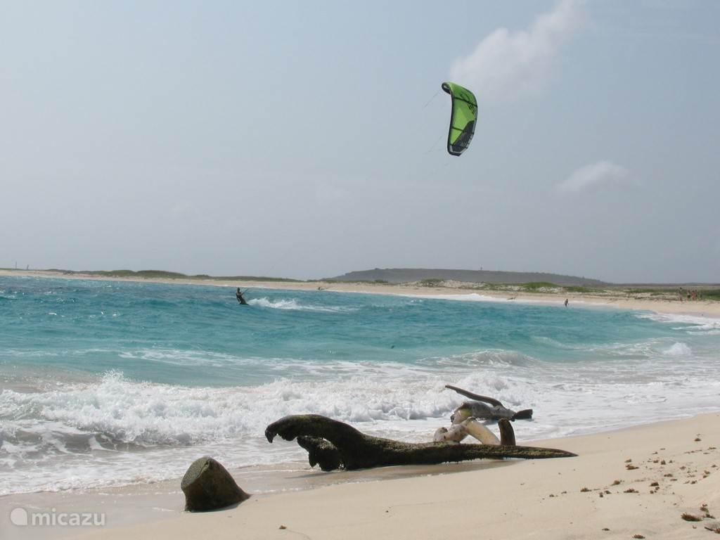 The east coast of Aruba