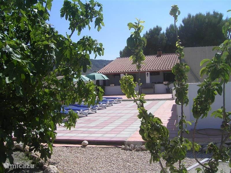 Vakantiehuis Spanje, Costa Blanca, Villena vakantiehuis Casa-corte-cerezas