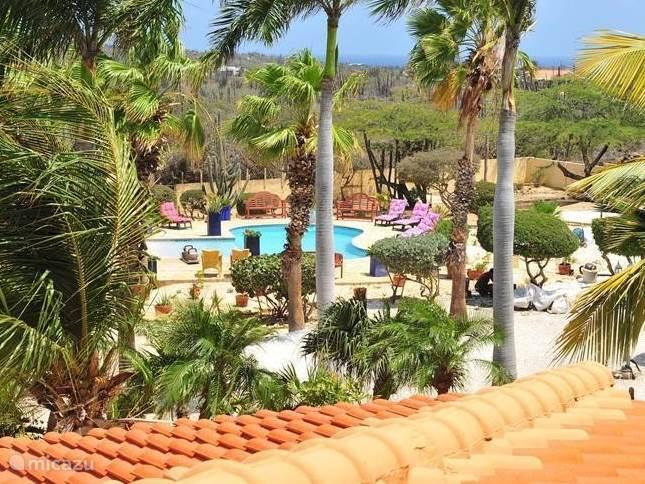Prachtige uitzicht over tuin naar zwembad op achtergrond heuvelachtige Aruba