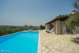 Zwembad met overdekte lounge
