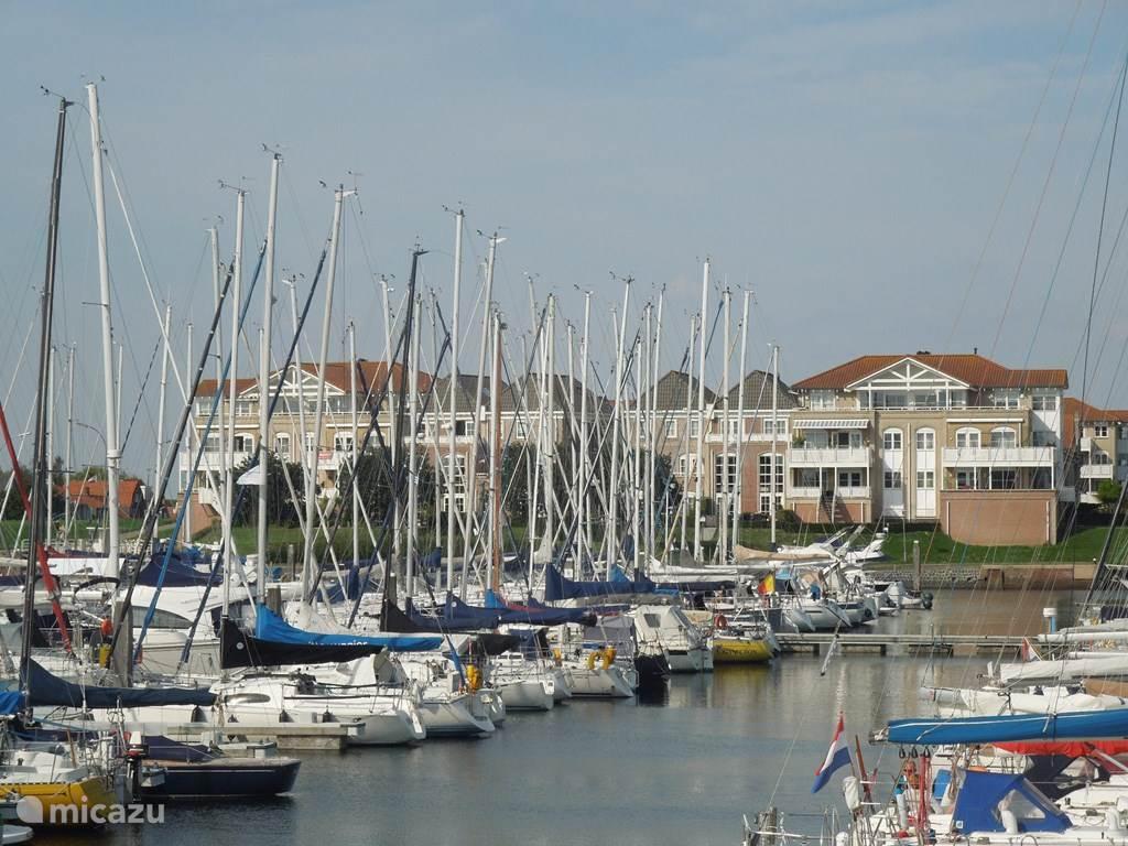 de haven van wemeldinge