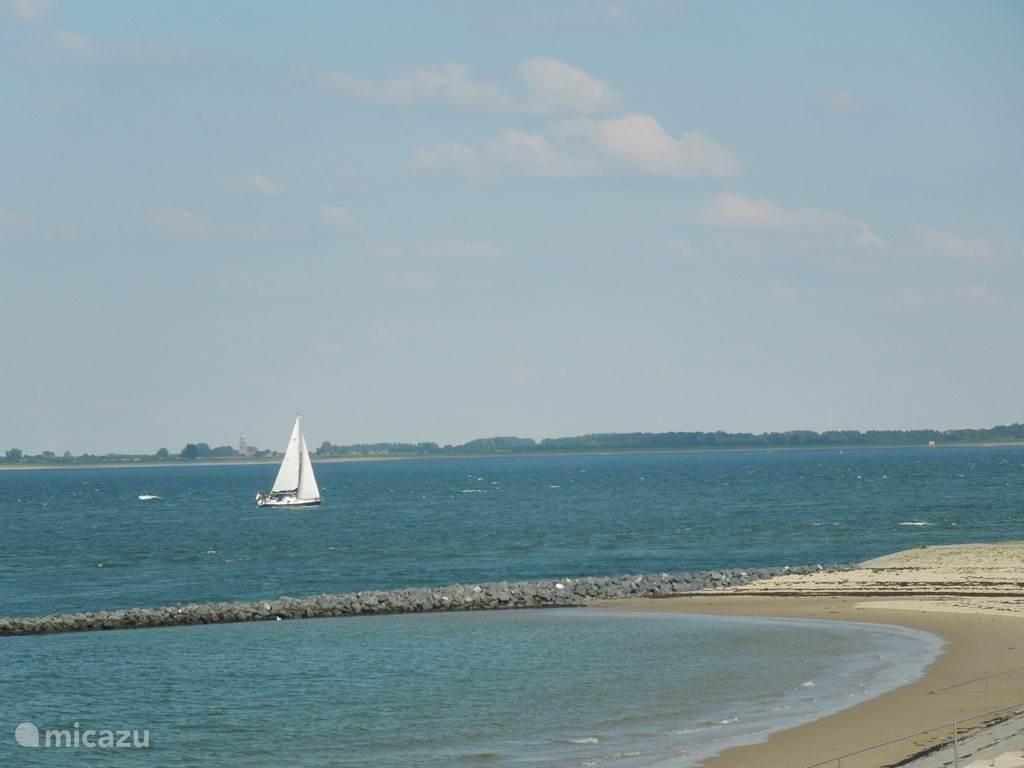Strand op 150 meter lopen.