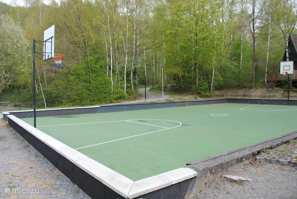 voetbal / basketball plein