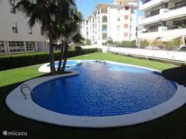 Zwembad met apart beveiligd kinderbadje, grote ligweides en talrijke schaduwplekken