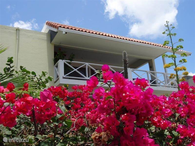 Vacation rental Curacao, Banda Ariba (East), Jan Thiel - apartment Sunrise 8 (A43)