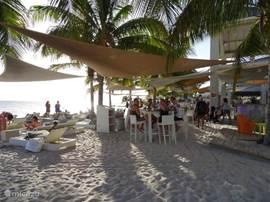 Vrije toegang Strand bij Papagaayo. Jan Thiel. Heerlijk restaurant Op 200 m loopafstand.