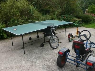 De outdoorwedstrijdtafeltennistafel, een eenwieler, een autoped, en een trapskelter waarmee door de hele tuin gescheurd kan worden.
