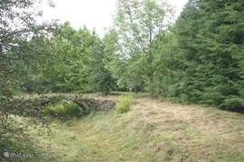 Het boogbruggetje waar in de winter water onder staat en ook als het veel geregend heeft.