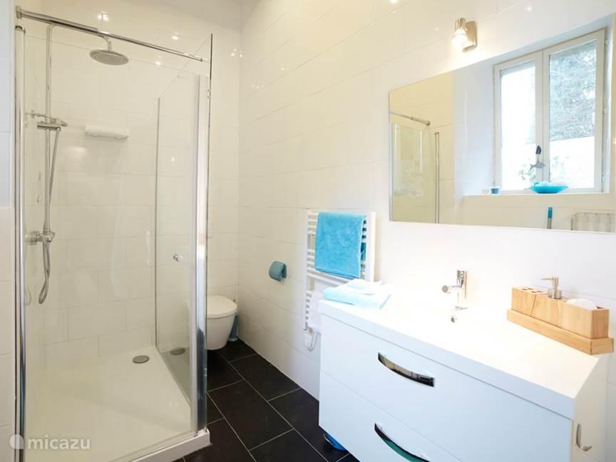 De badkamer met hangend toilet, ruime wastafel en een regendouche.