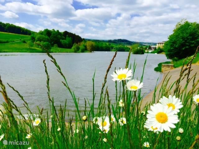 uitzicht over het meer bij het seepark