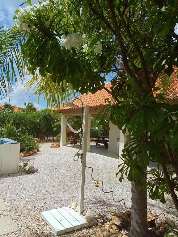 Tuin douche onder een grote palmboom