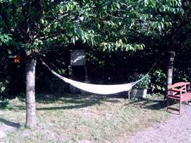 In the hammock between the cherry trees with a good book or just chill