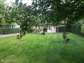 uitzicht Boomgaard voor het vakantiehuis