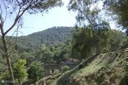 13-Natuurpark Montes de Malaga