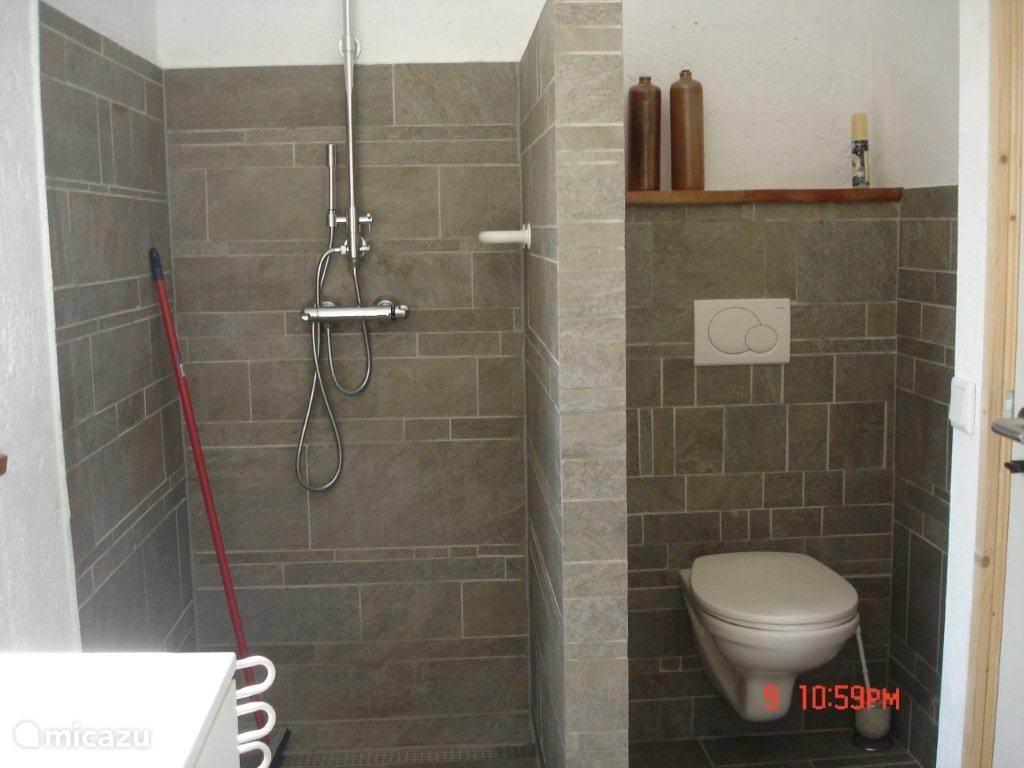 Badkamer-2 met toilet, douche en wastafelmeubel
