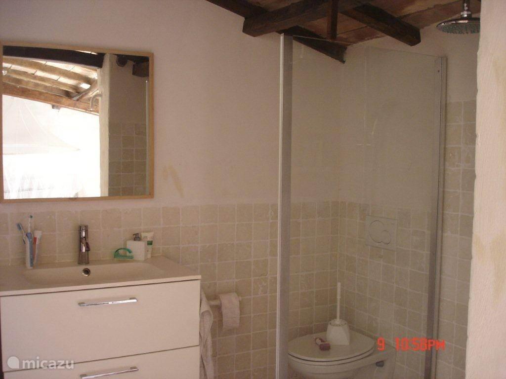 badkamer-1 met douche, wc en wastafelmeubel