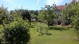 Mooie ruime tuin met opblaas zwembad (juli, Augustus)zeer prive met een groot terras.
