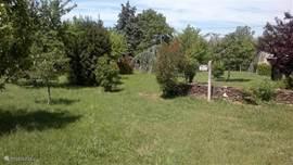 Mooi uitzicht op de tuin met diverse fruitbomen Bvb. Kersen hazelnoot walnoot peren en appels.