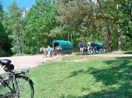 Huifkartochten, wandelen of fietsen in Drents Friese Wold
