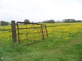 Lente in Drenthe