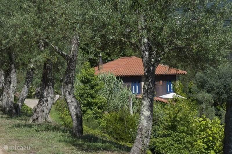 Vakantiehuis Portugal, Noord-Portugal, Vila Nune Vakantiehuis Quinta dos Moinhos -  Casa do Vinho