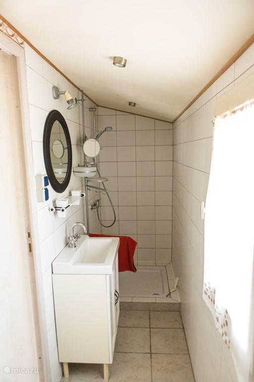 De badkamer heeft links de wastafel en de douche...