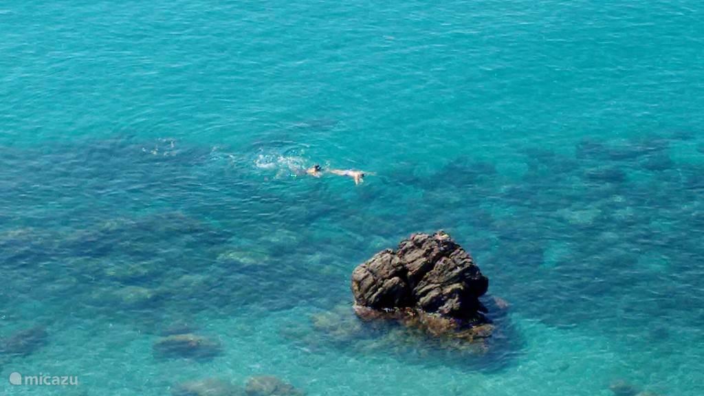 Snorkelen!