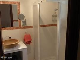 Ensuite badkamer 2 met douchecabine, grenzend aan slaapkamer 2.