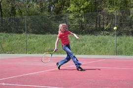De tennisbaan
