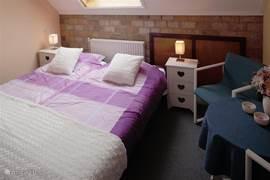 slaapkamer met douche en wastafel op de kamer.
