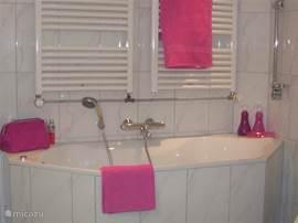 Badkamer beneden met toilet, douche en ligbad
