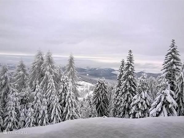 Foto vanaf het balkon op de net vers gevallen sneeuw.