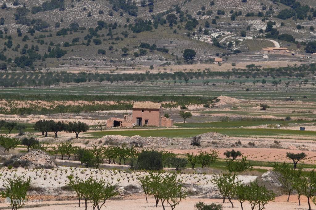 De berg El Carche in close-up