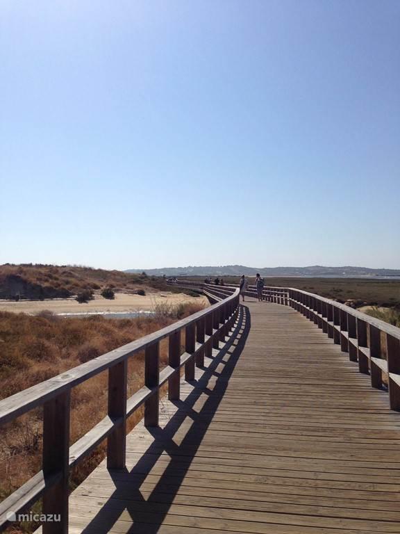 Bij vloed loopt dit gebied onder en bij eb valt het dus droog. Je kunt hier kilometers wandelen over houten loopbruggen met een prachtige wisselend panorama om je heen. Great.
