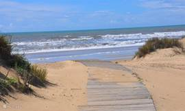 pad in de duinen, uitgang naar het strand