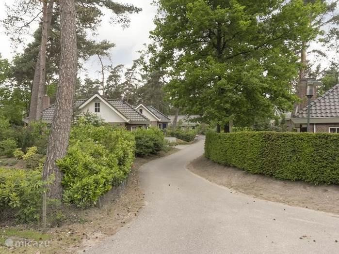 De doodlopende straat waaraan de villa is gelegen.