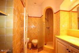 Badkamer in DE STUDIO met douche, wastafelmeubel, kastruimte en toilet