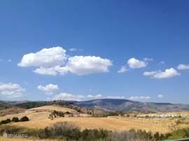 De omgeving is werkelijk prachtig, zowel met de auto te verkennen of ga de natuur in om te fietsen, te wandelen, er zijn mogelijkheden paard te rijden. In het nationale park Sierra de las Nieves kunt u bijzondere vogels aantreffen. Neem vooral de verrekijkers mee die in het huis liggen.