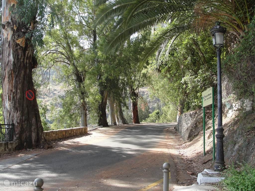 Prachtige wandeling in het dorp naar het kuuroord El Balneario.