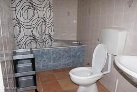 Luxe badkamer met ligbad/douche, wastafel, toilet en bidet.