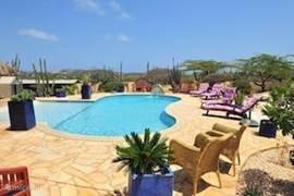 Mooi uitzicht over zwembad ligstoelen en gezellige zitjes