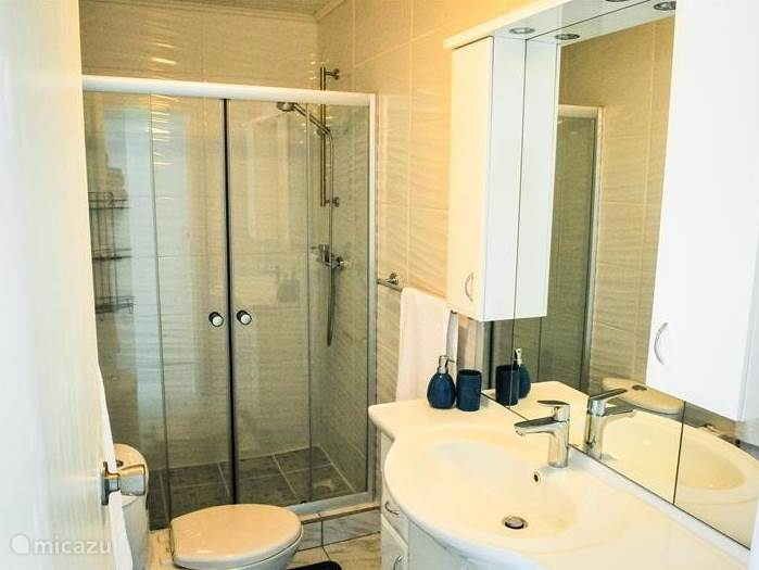 Spacious bathroom with WC including sink and hairdryer
