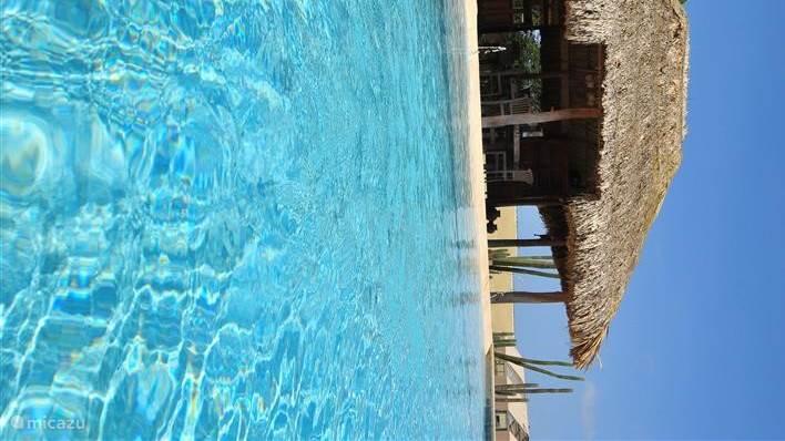 Zwembad met aangrenzend gazebo  met audio internet barbecue vaatwasser en koelkast
